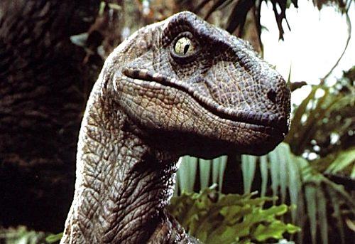 141_velociraptor.jpg