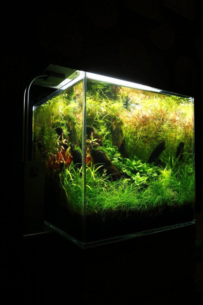 30cm cube 4.jpg