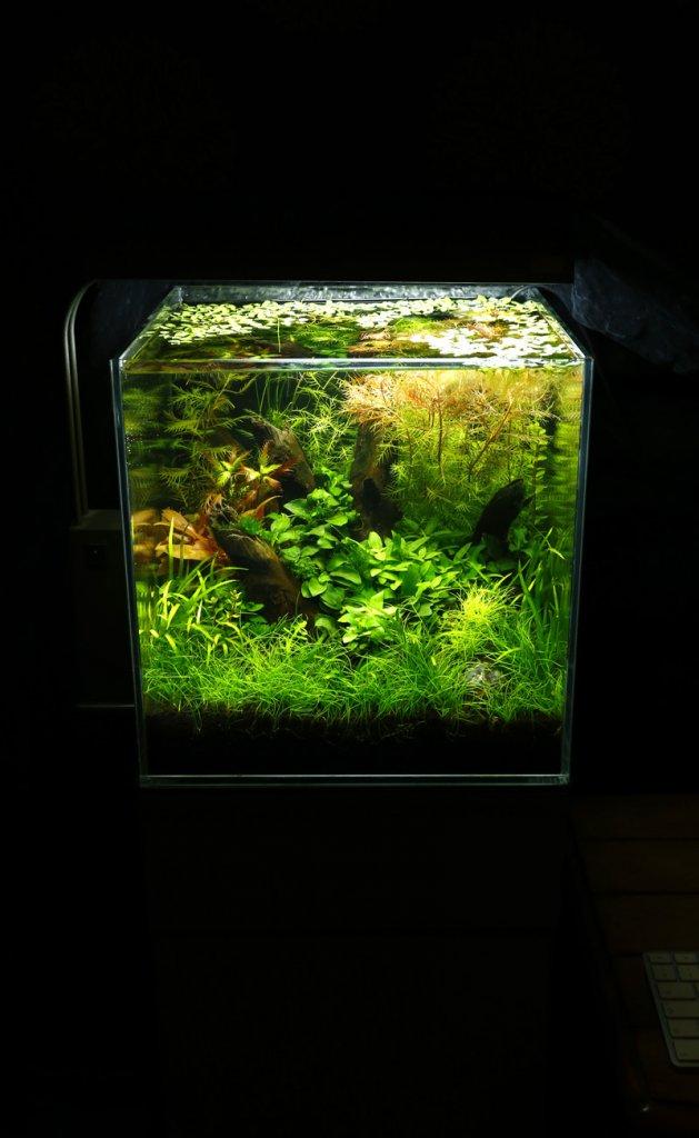 30cm cube.jpg