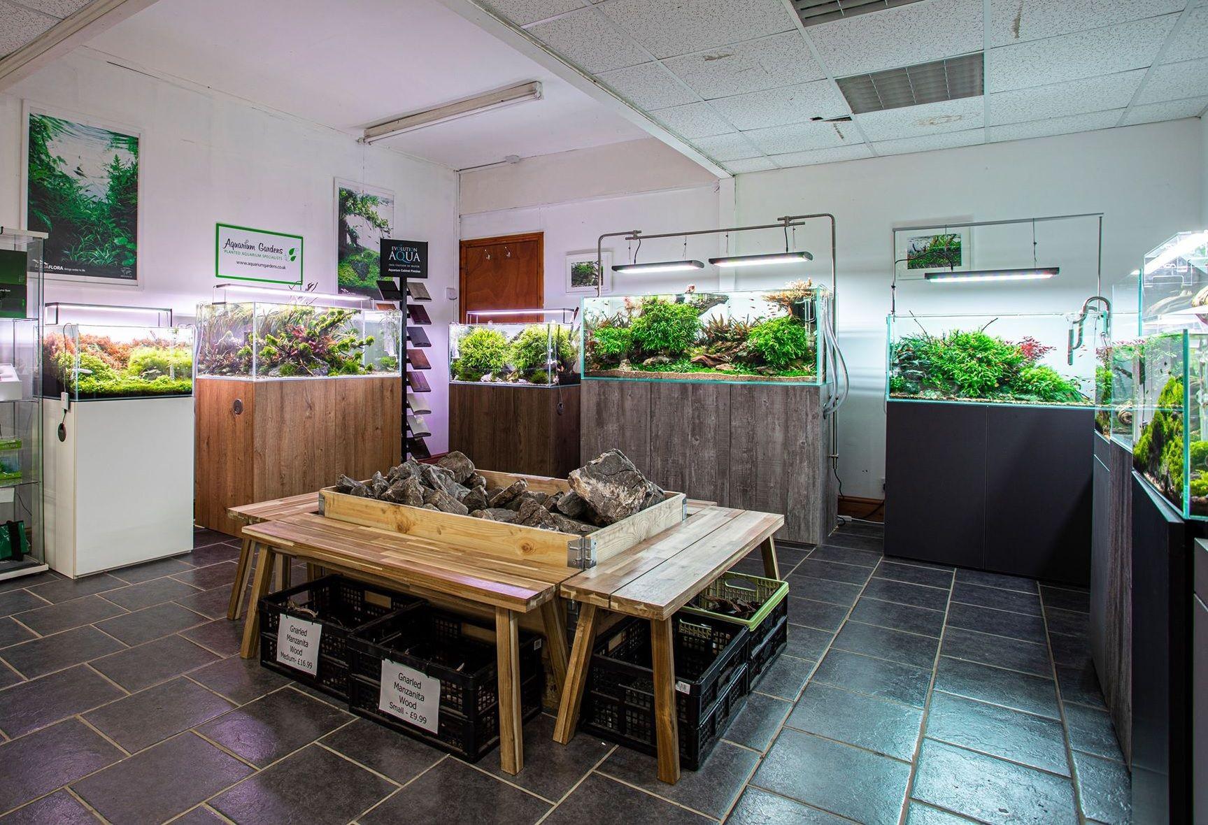 aquarium-gardens-aquascape-showroom-overview.jpg