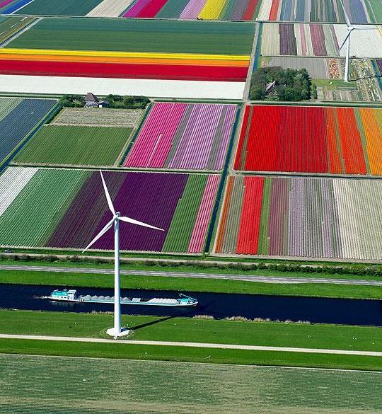 birds-eye-view-aerial-photography-11-540x585.jpg
