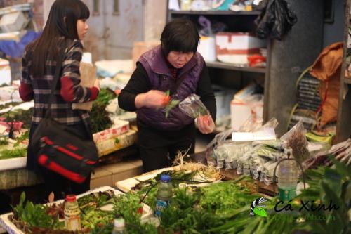 Ca-Xinh-tham-quan-va-lay-hang-tai-Quang-Chau-Trung-Quoc-thang-12-nam-2012-45.jpg