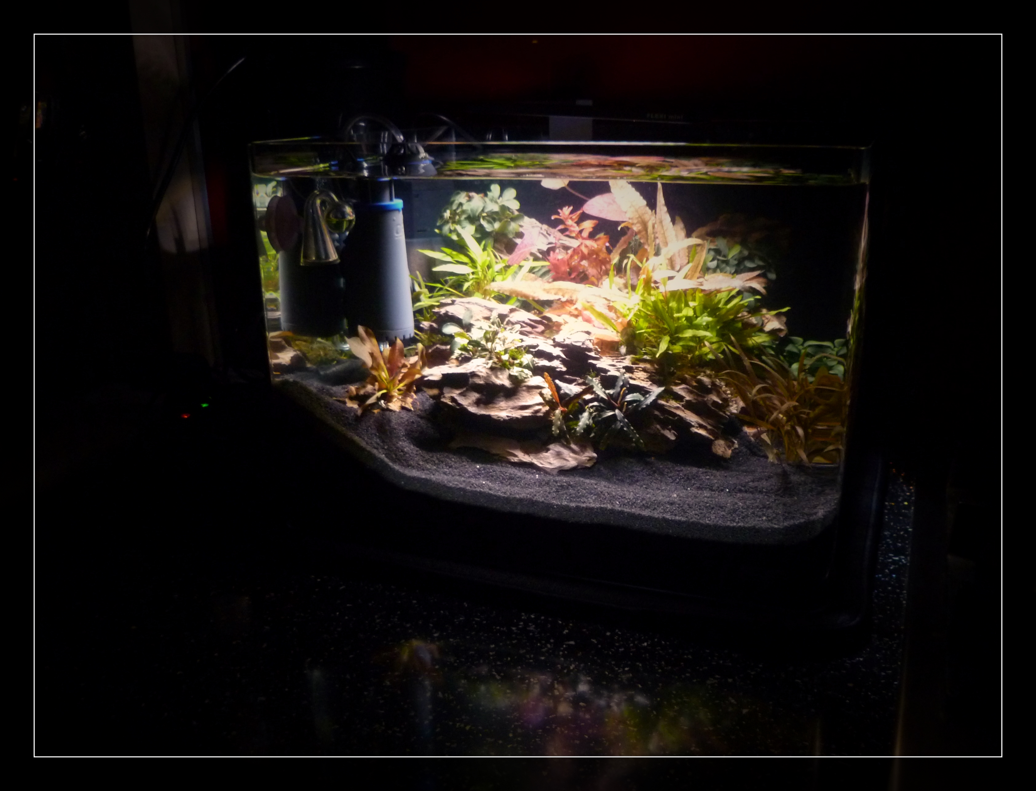 Dennerle Nano Scapers Tank..jpg 2.jpg