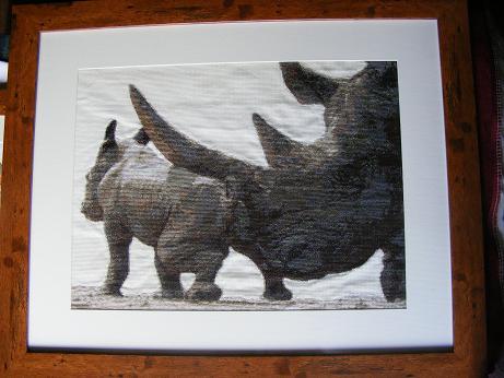 finished_rhino.jpg