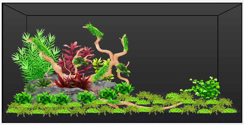 Planted Scape with mini landscape rock.png