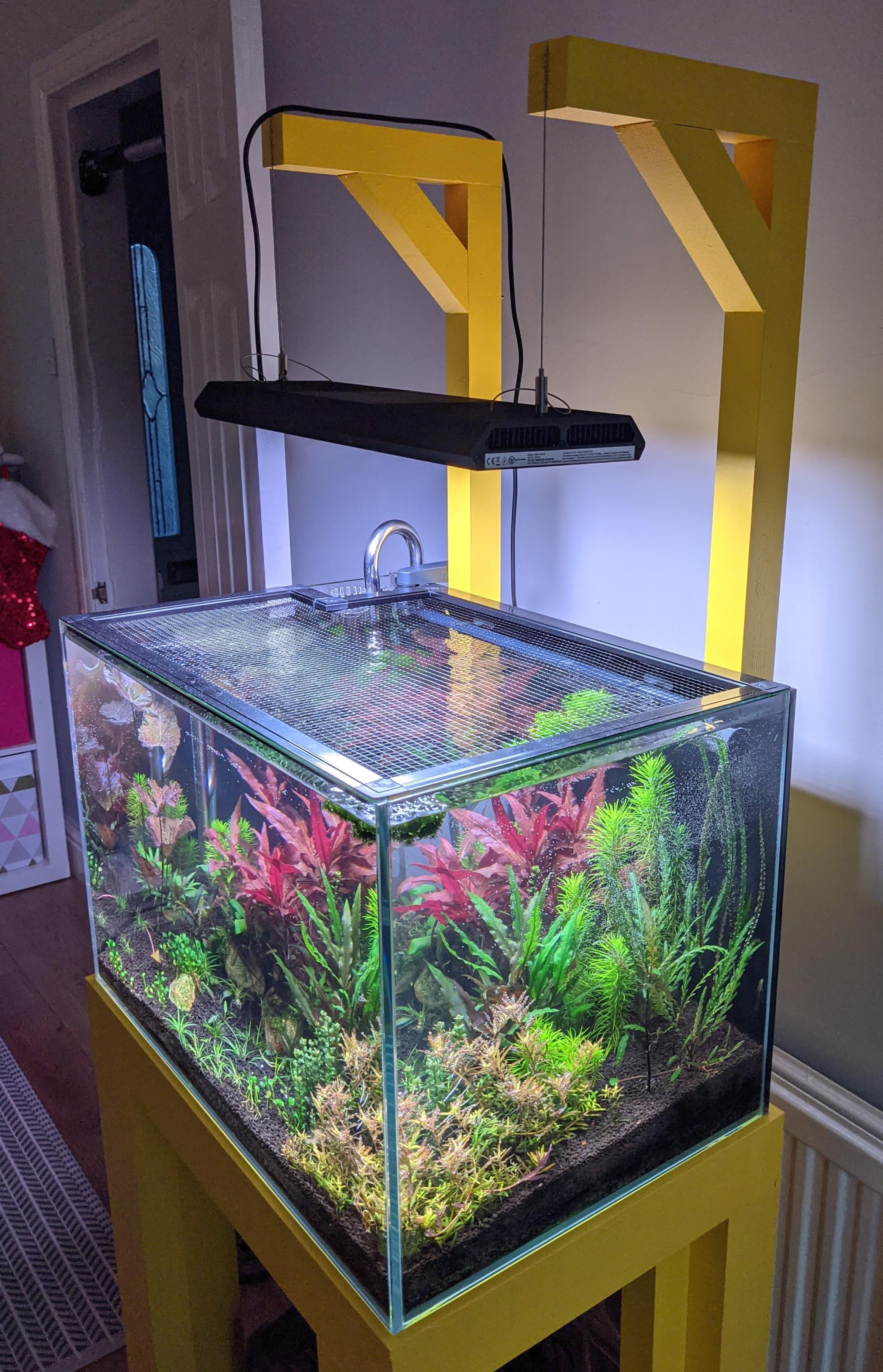 Photo of the aquarium