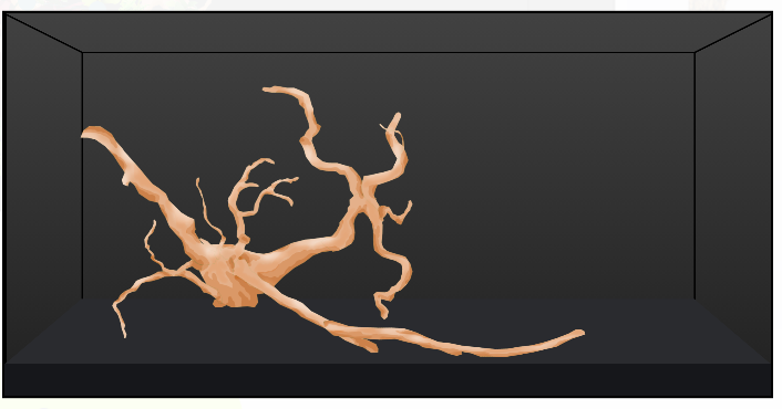 Scape with only driftwood.png