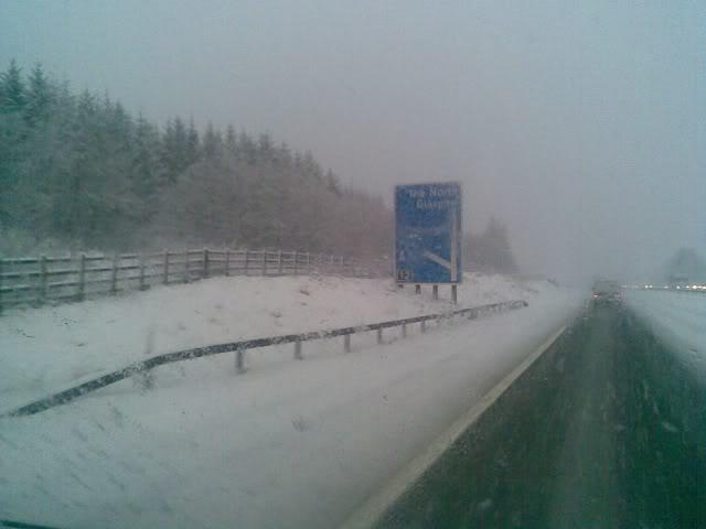 SnowFall028.jpg