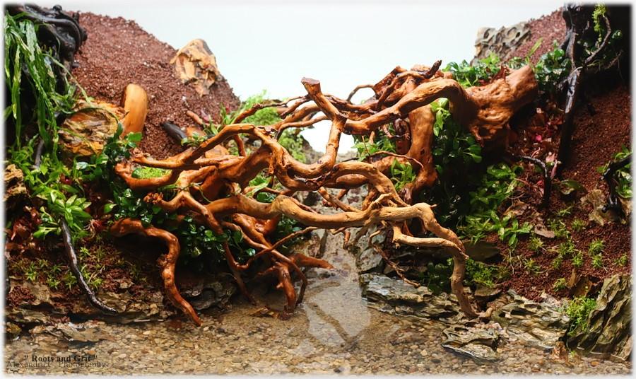 watermarked-rootsandgrit_day2_23_900_rszt1611cfe91.jpg